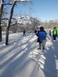 лыжня1